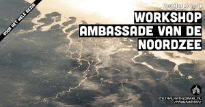 Workshop Ambassade van de Noordzee - voor het hele gezin @ Metaal Kathedraal