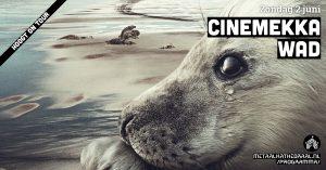 CineMekka | Wad @ Metaal Kathedraal