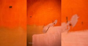 Abstracte-fotografie.-Fotolezing-georganiseerd-door-fotoclub-Leidsche-Rijn