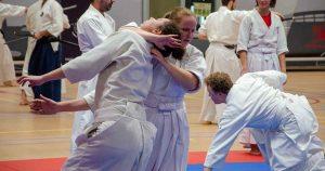 Eerste Open Internationale Seminar Takeda Ryu Nederland in Leidsche Rijn