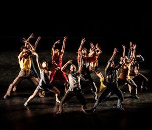 DansDonderdag: Holland Dance Festival en Codarst - Talent On The Move 2020 @ Podium Hoge Woerd