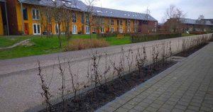 vergroeining fietsboulevard in Leidsche Rijn