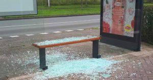 Politie op zoek naar jonge vandalen na vernieling in Vleuterweide_foto_politievdm