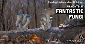 Filmontbijt met Fantastic Fungi @ Metaal Kathedraal